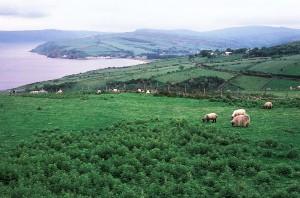 paesaggio_irlandese