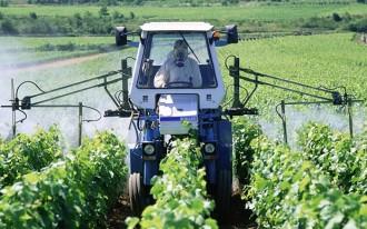 pesticida vitigno