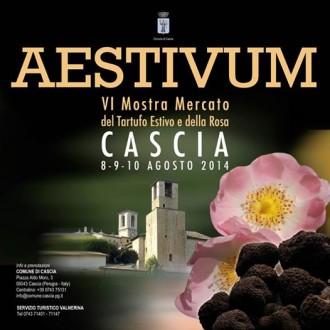 AESTIVUM